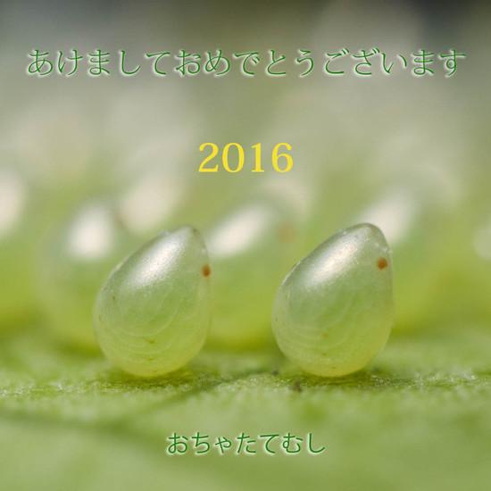 2016_dsc6914